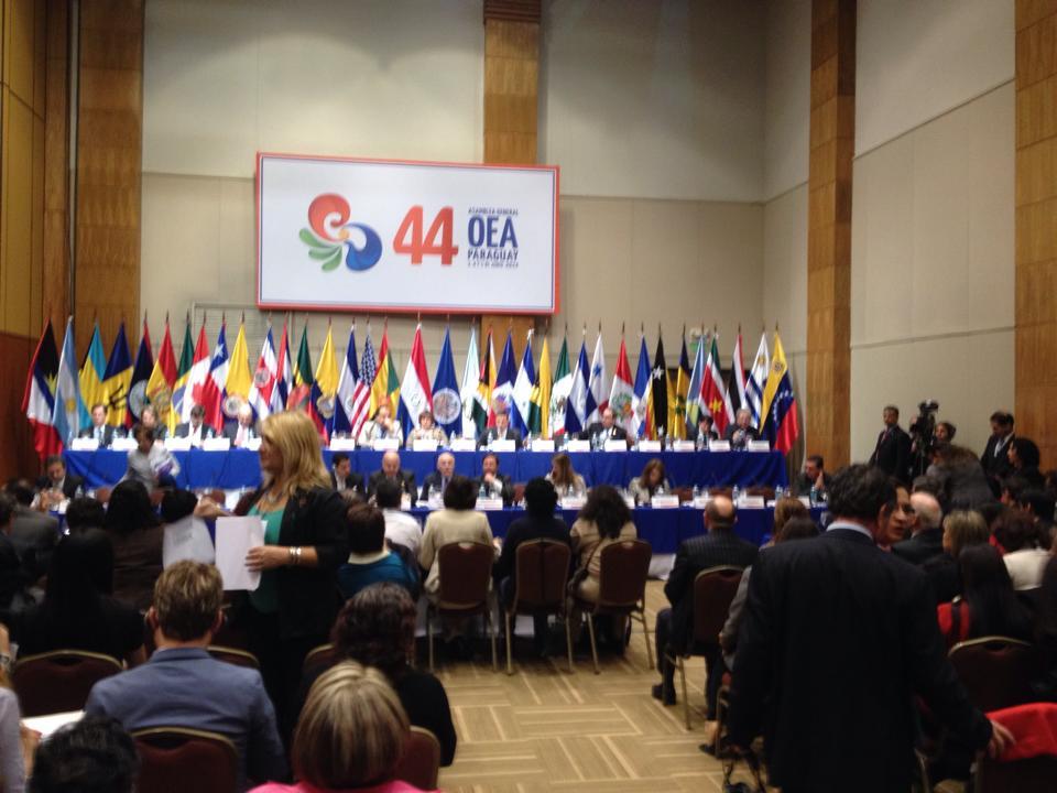 OEA. Paraguay.